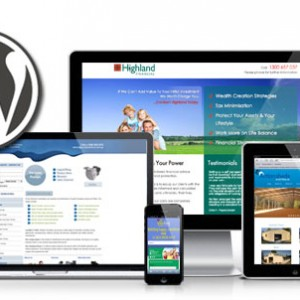 wordpress-web-development